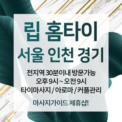 서울.경기.인천-립홈타이